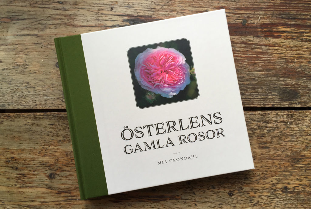 Bokhandlare som säljer Österlens gamla rosor.
